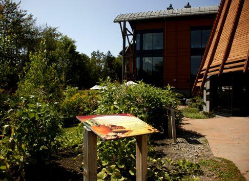 Jardin des trois soeurs - Musée huron-wendat
